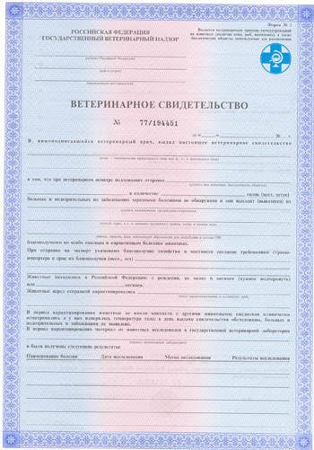 Ветеринарная справка для перевозки животных №1 Справка о кодировании от алкоголизмаакта употребления алкоголя на работе форма 155 у Электродная ули